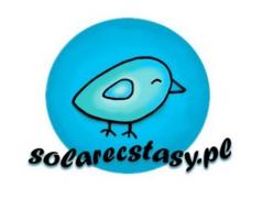 Solarecstasy.pl - nowy wymiar energii odnawialnej